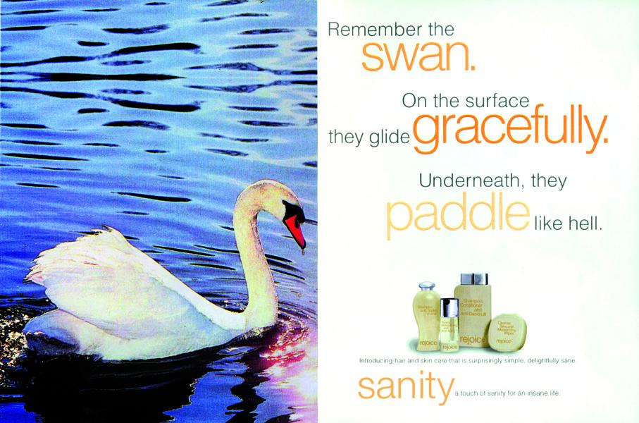 sanity_swan